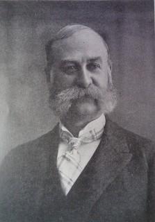 Thomas Ferguson (1845-1903)